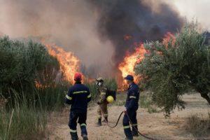 Μεγάλη φωτιά σε δάσος στα Άγναντα Ηλείας