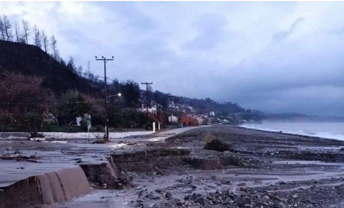 «Αθηνά»: Τεράστιες καταστροφές στα καμένα της Εύβοιας – «Δεν έμεινε τίποτα όρθιο» (Video)