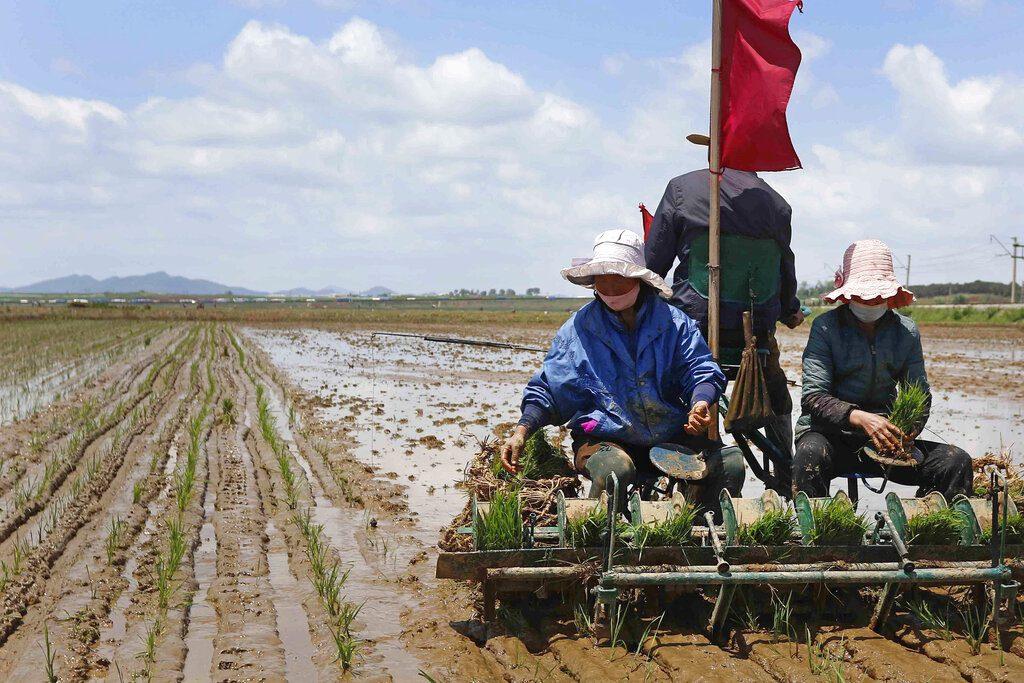 Βόρεια Κορέα: Οι ευάλωτοι κινδυνεύουν από την πείνα, λέει ο ΟΗΕ