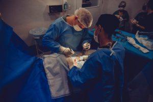 Απίστευτο ιατρικό επίτευγμα: Για πρώτη φορά στον κόσμο γιατροί στις ΗΠΑ συνέδεσαν σε άνθρωπο νεφρό από χοίρο