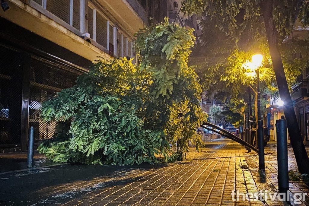 Κακοκαιρία «Αθηνά: Πτώσεις δέντρων στη Θεσσαλονίκη – Κλειστά σχολεία στη Χαλκιδική
